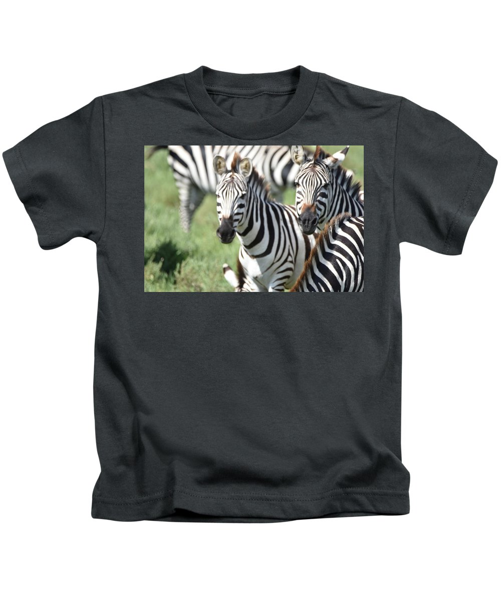 Kids T-Shirt featuring the photograph Zebra3 by Kathy Sidell