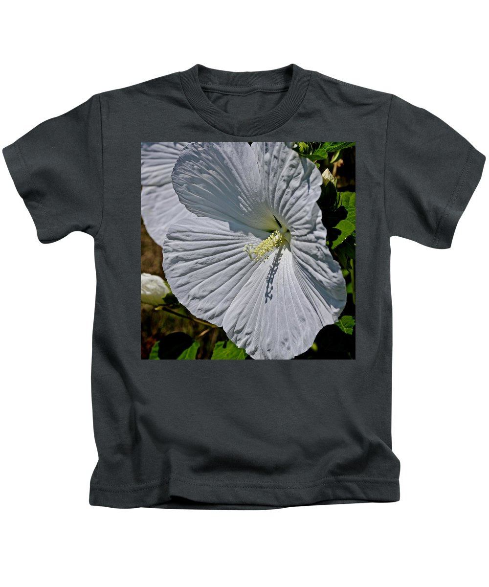 Rose Mallow Kids T-Shirt featuring the photograph A Rose Is A Rose Is A ... by Bill Zajac