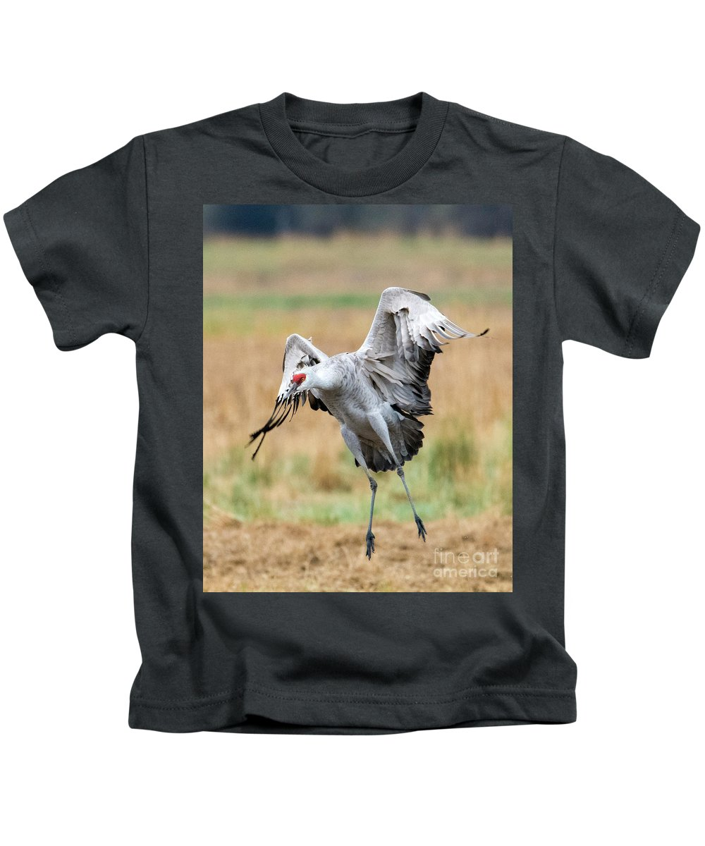 Sandhill Crane Kids T-Shirt featuring the photograph Awkward Landing by Mike Dawson