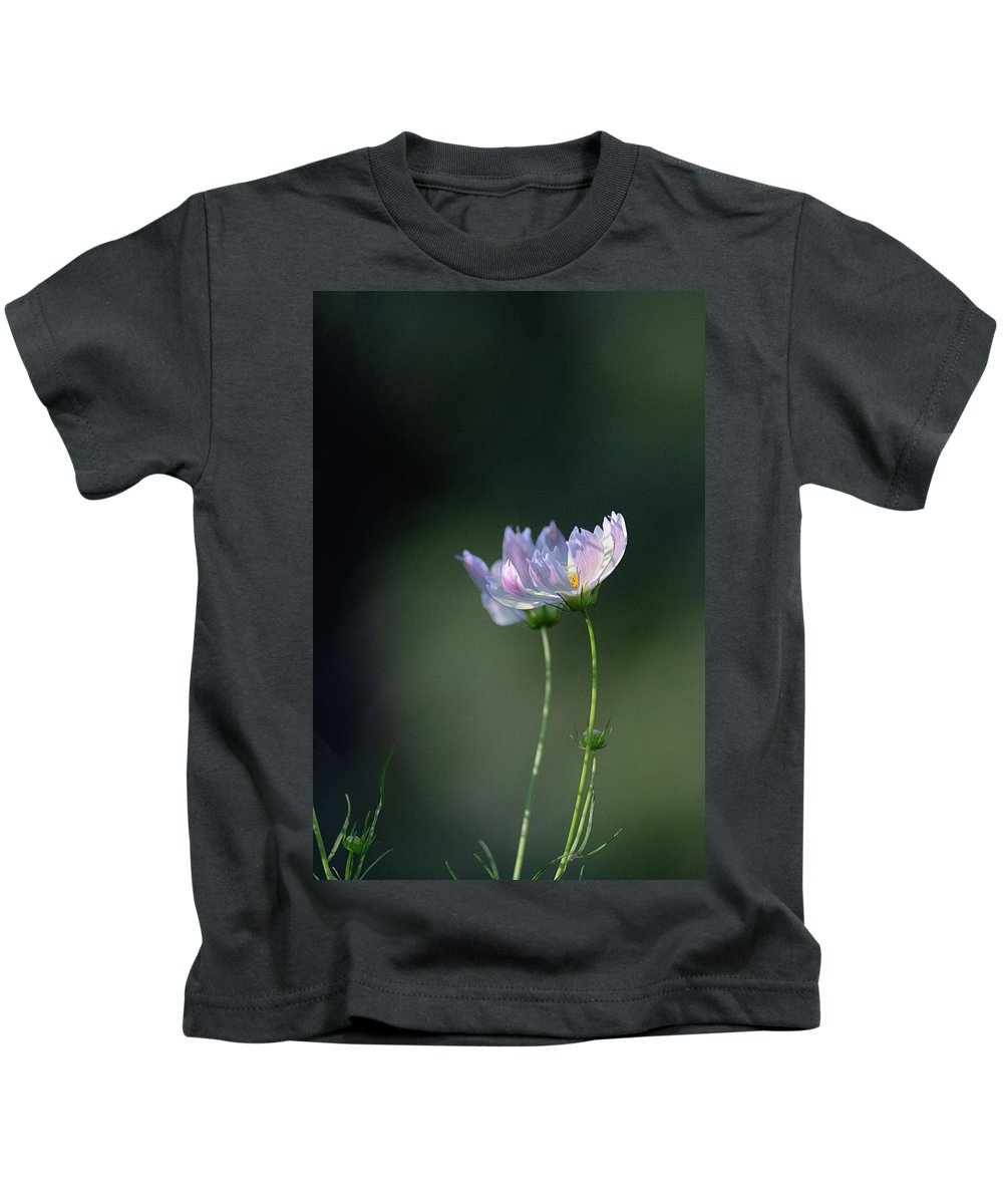Flower Kids T-Shirt featuring the photograph Cosmos by Cindi Poole