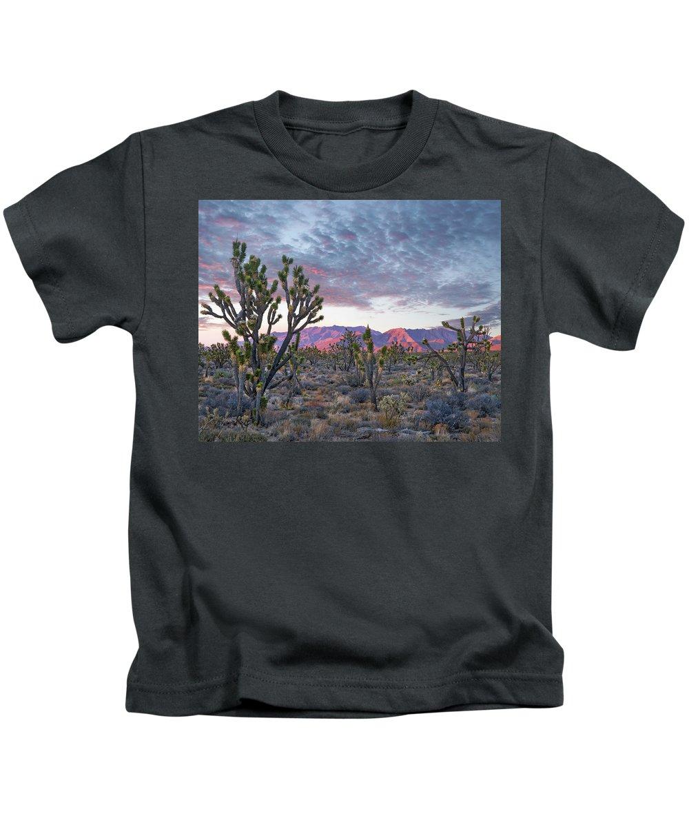 00565357 Kids T-Shirt featuring the photograph Joshua Trees And Little San Bernardino by