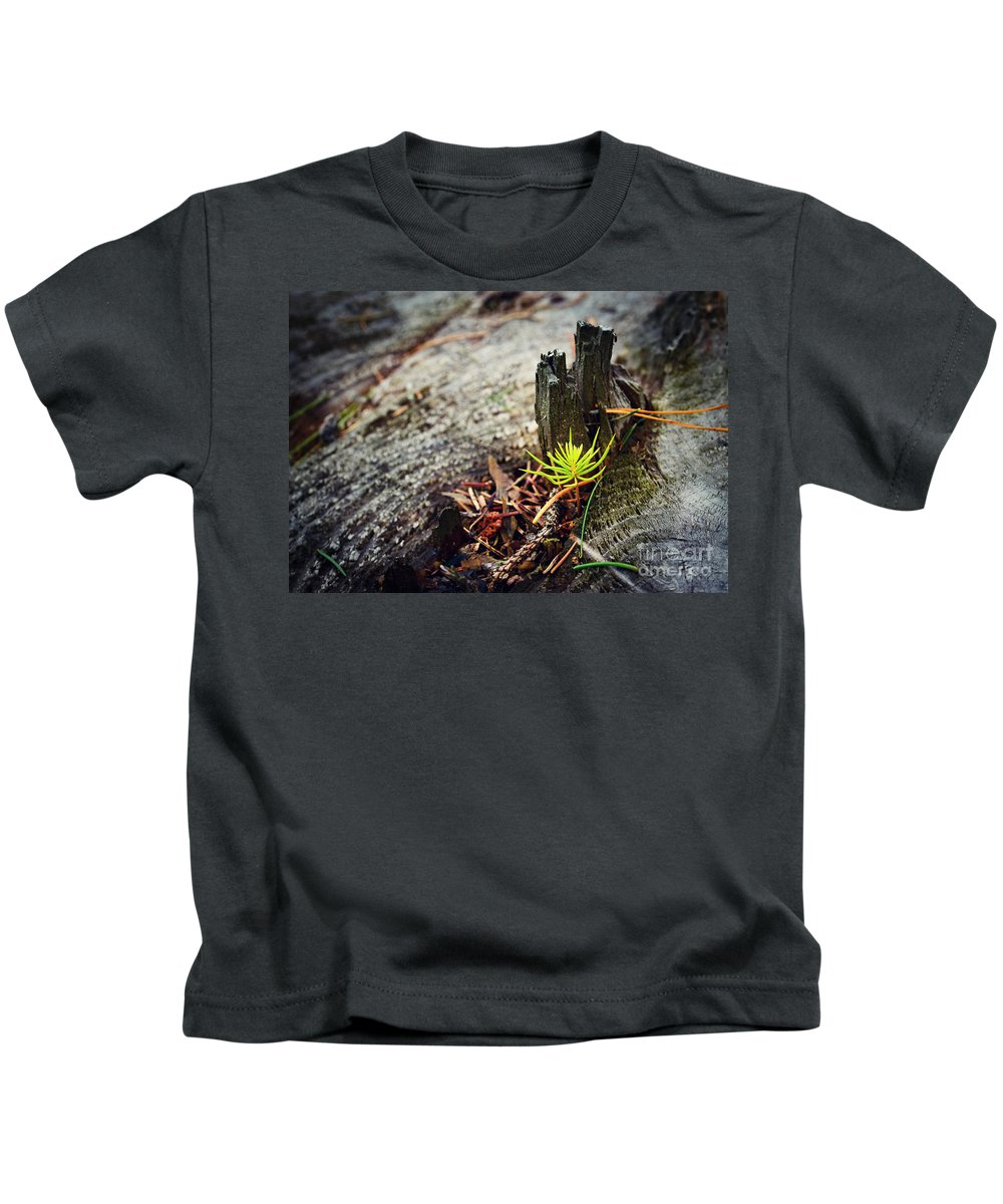 Tree Kids T-Shirt featuring the photograph Small Spruce Growing On An Old Tree Stump by Jozef Jankola