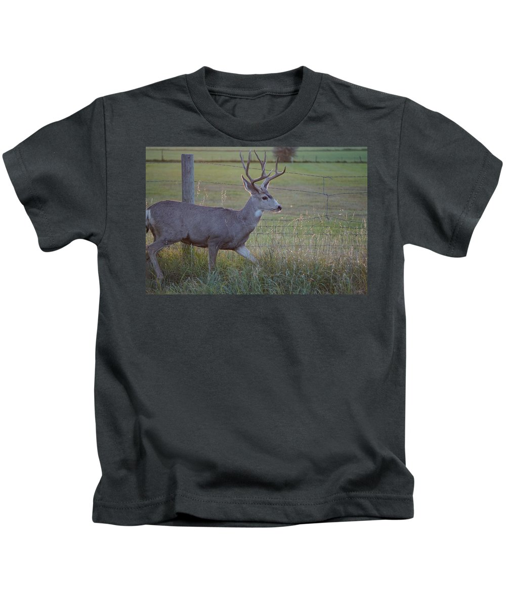September Kids T-Shirt featuring the photograph Whitetail Deer by Susan Brown
