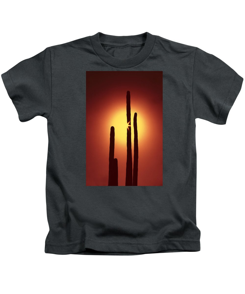 Sun Kids T-Shirt featuring the photograph Encinitas Cactus by Andre Aleksis