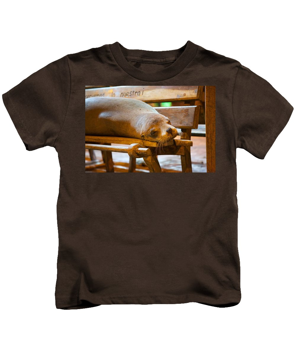 Sealion Kids T-Shirt featuring the photograph Bus Stop by Allan Morrison