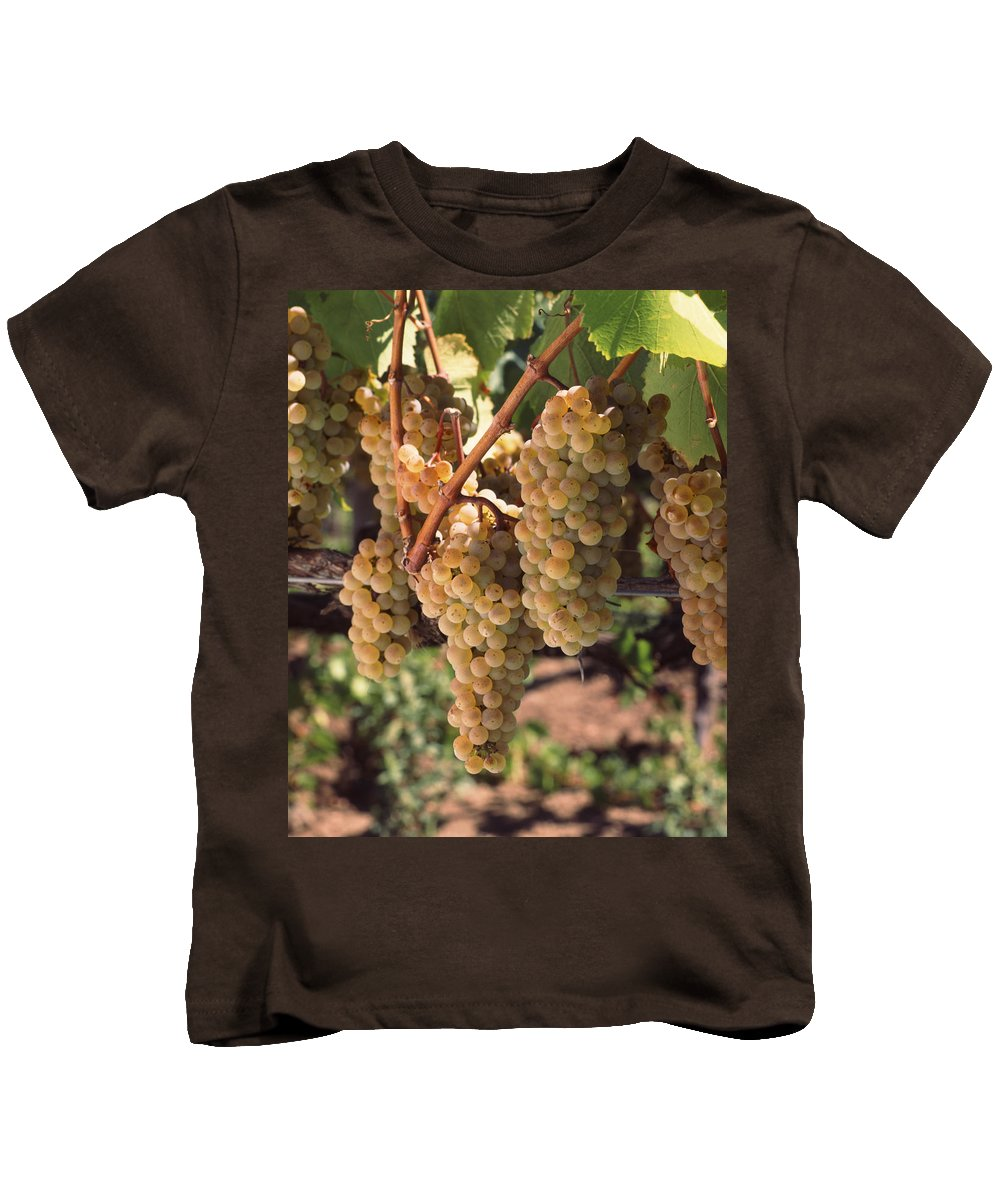 Photography Kids T-Shirt featuring the photograph Chardonnay Grapes In Vineyard, Carneros by Panoramic Images