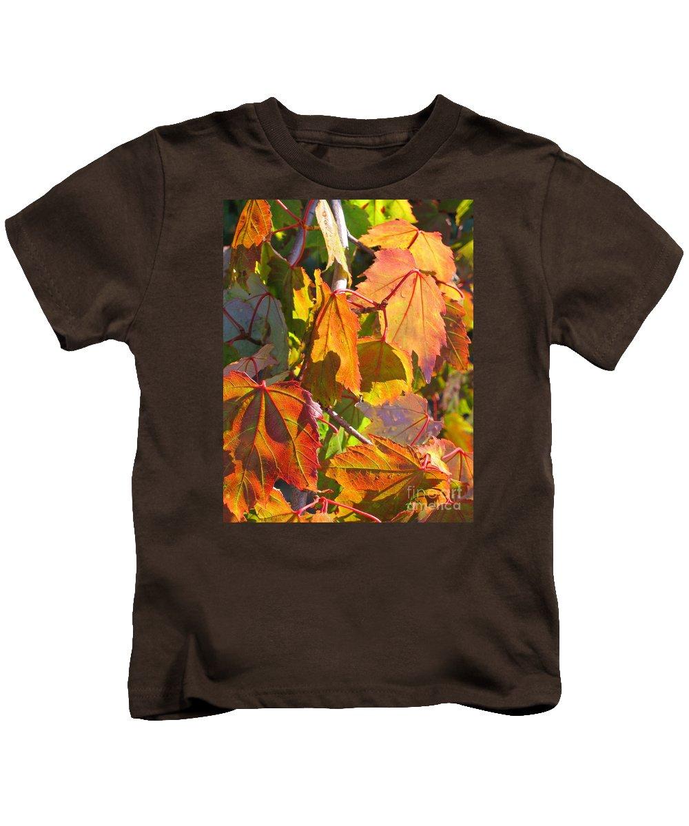 Autumn Kids T-Shirt featuring the photograph Illumining Autumn by Ann Horn