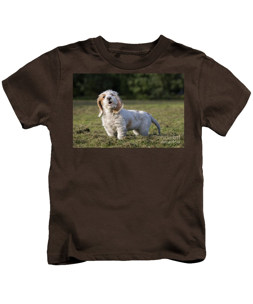 Mammal Kids T-Shirt featuring the photograph 110506p207 by Arterra Picture Library