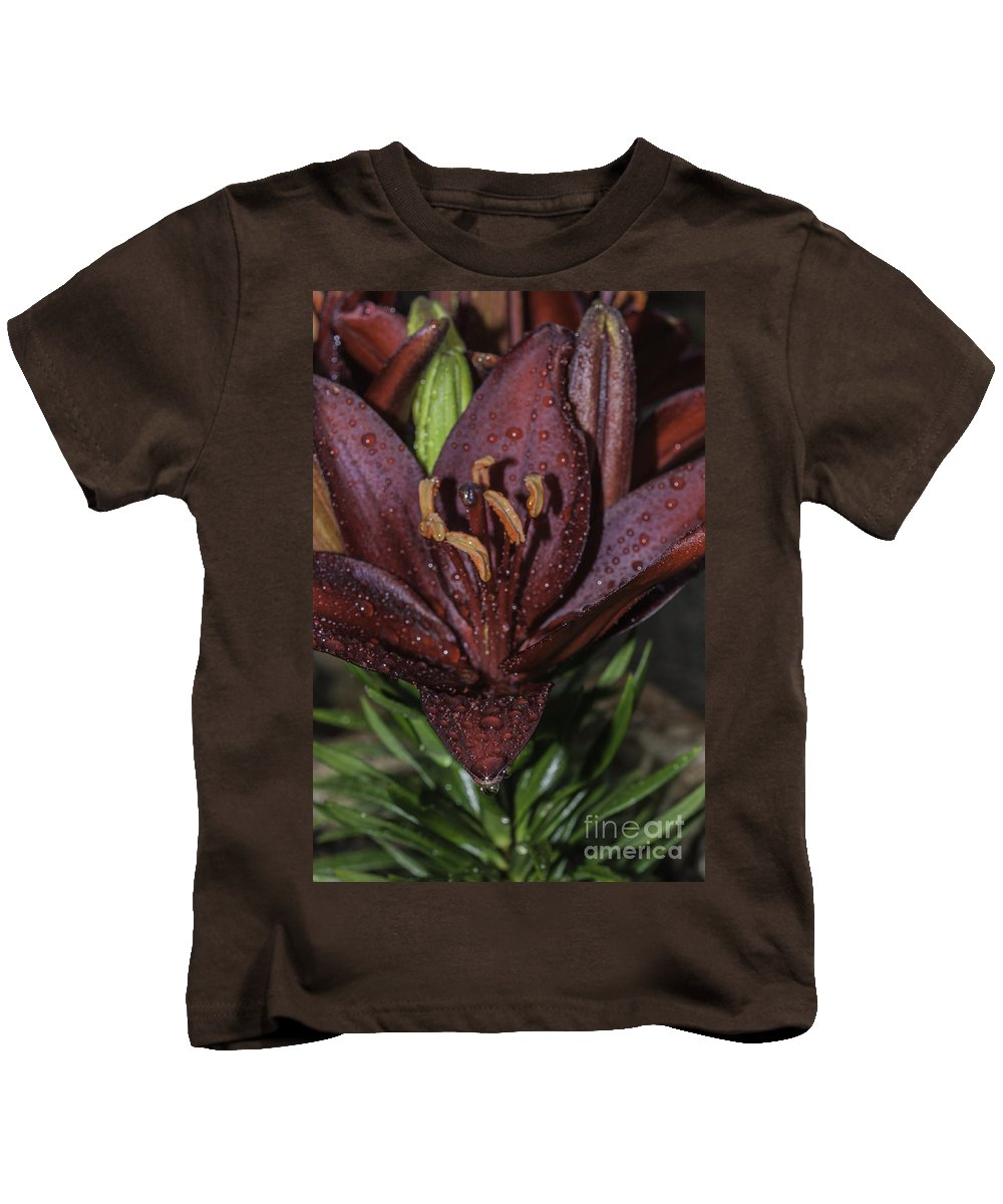 Rain Kids T-Shirt featuring the photograph After The Rain 2 by Steve Purnell