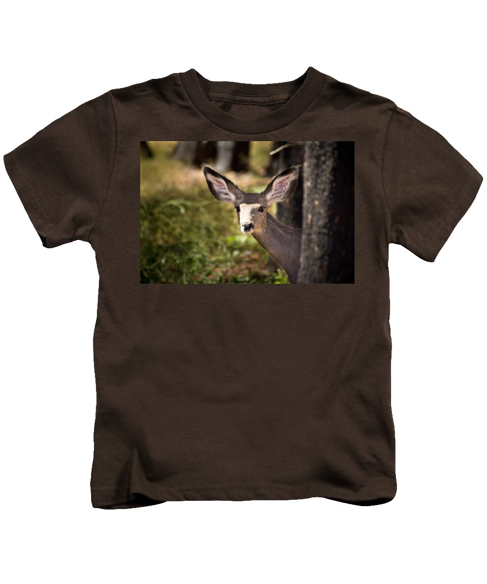 Fawn Kids T-Shirt featuring the photograph All Ears - Mule Deer Fawn - Casper Mountain - Casper Wyoming by Diane Mintle