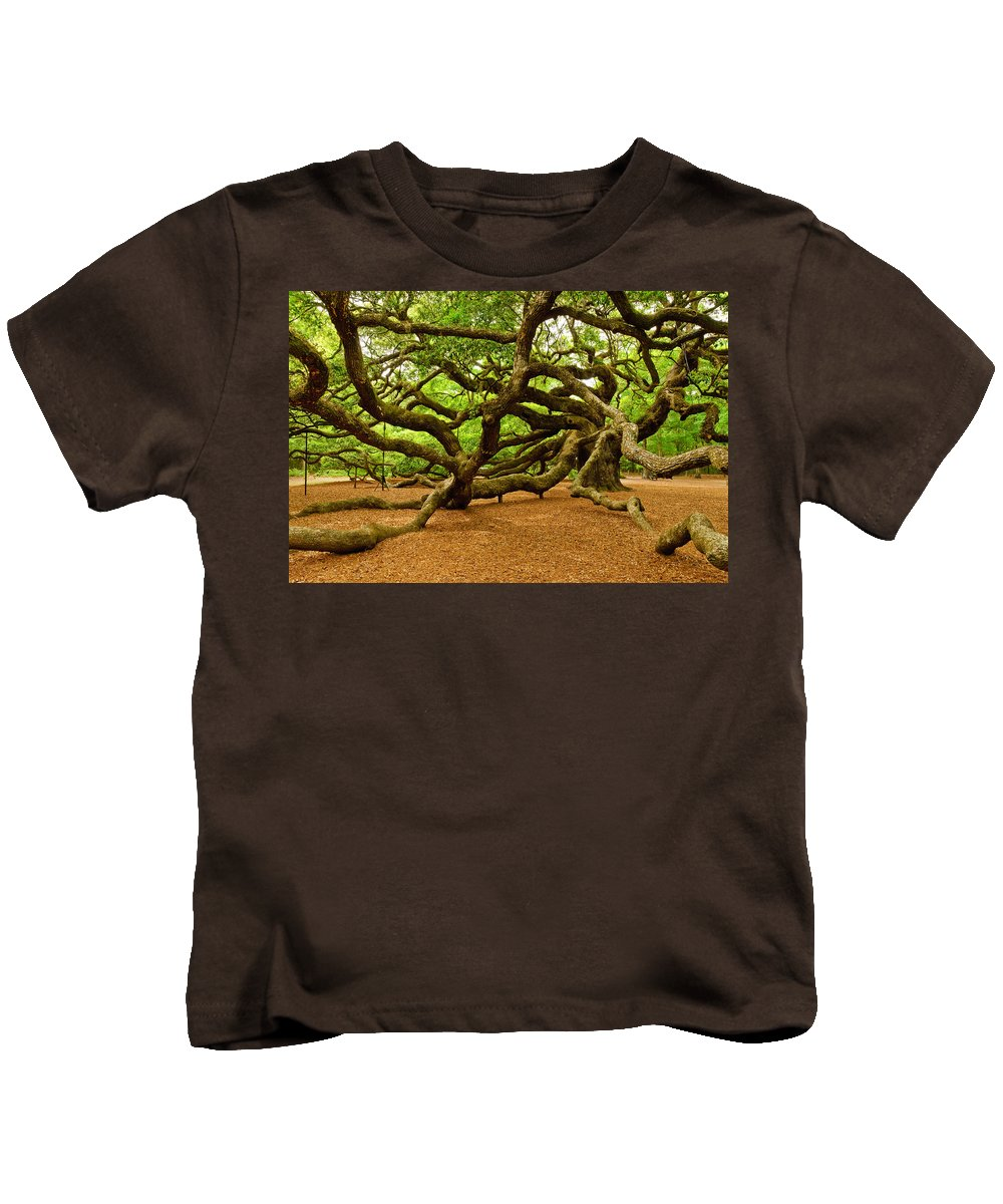 Nature Kids T-Shirt featuring the photograph Angel Oak Tree Branches by Louis Dallara