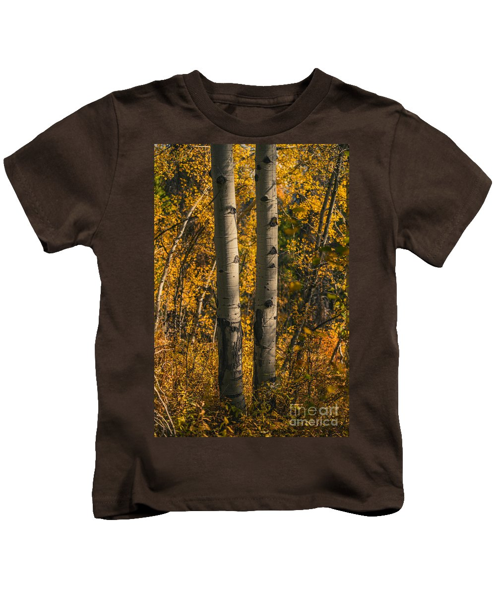 Aspen Kids T-Shirt featuring the photograph Aspen Trees In Autumn by Vishwanath Bhat
