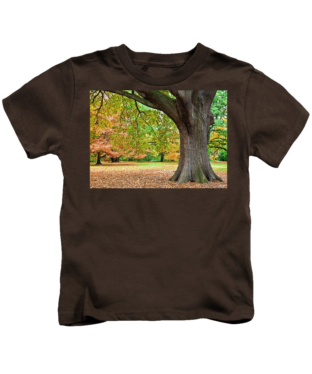 Autumn Kids T-Shirt featuring the photograph Autumn by Dave Bowman