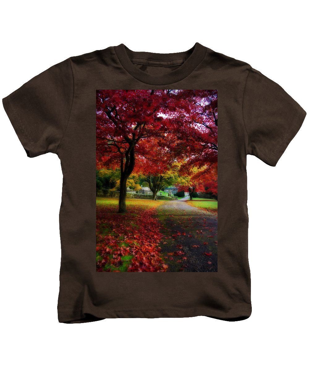 Maple Kids T-Shirt featuring the photograph Autumn Path by Beverly Cash