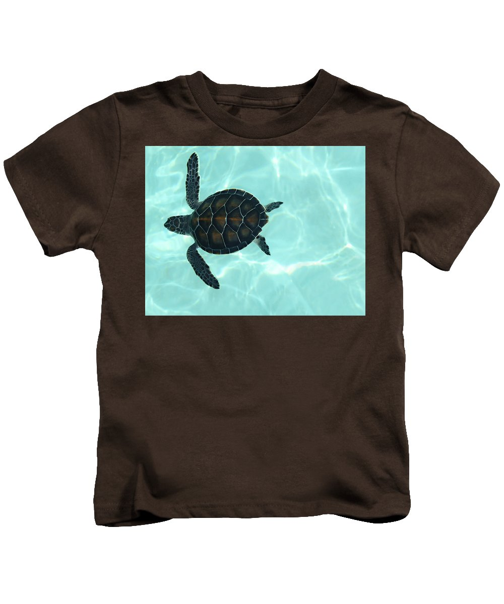 Baby Sea Turtle Kids T-Shirt featuring the photograph Baby Sea Turtle by Ellen Henneke