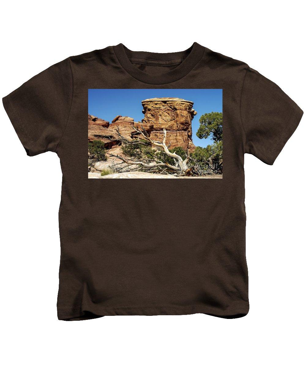 Big Spring Canyon Overlook Needles District Canyonlands National Park Utah Parks Rock Formation Formations Tree Trees Landscape Landscapes Desertscape Desertscapes Kids T-Shirt featuring the photograph Big Spring Canyon Overlook by Bob Phillips