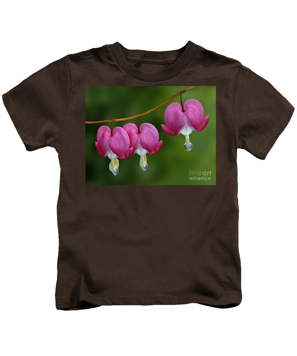 Bleeding Kids T-Shirt featuring the photograph Bleeding Hearts by Susan Candelario