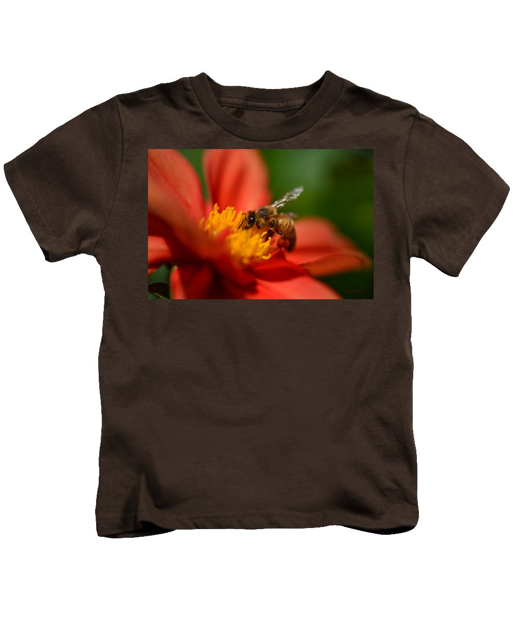 Bee Kids T-Shirt featuring the photograph Buzz Is The Word by Donna Blackhall