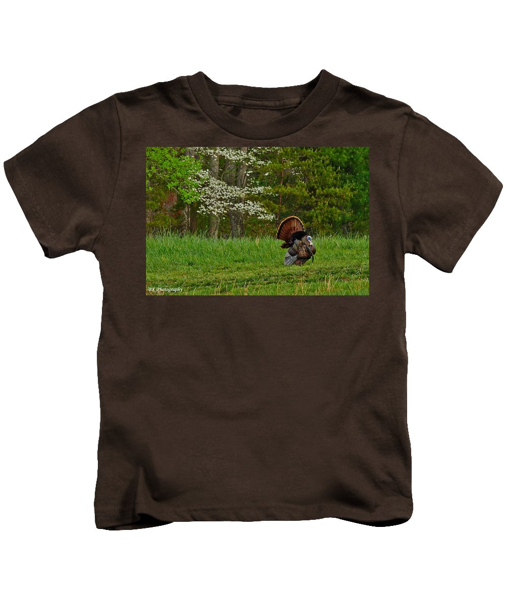 Smoky Mountains Kids T-Shirt featuring the photograph Cades Cove Spring Visions by Brian Simpson