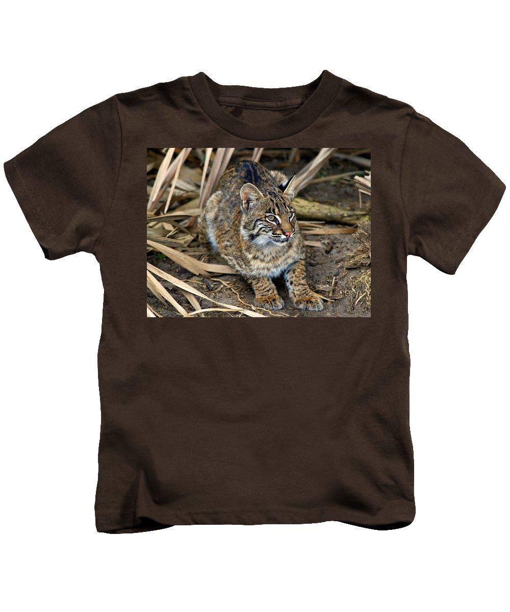 Bob Cat Kids T-Shirt featuring the photograph Close Enough by Davids Digits