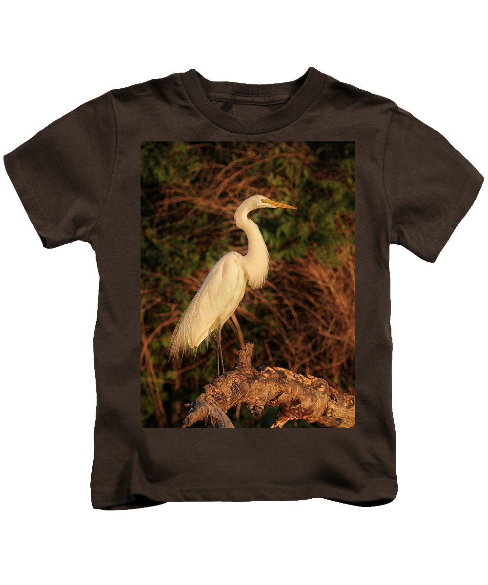 Cranes Kids T-Shirt featuring the photograph Common Egret Of Palestine Lake by Michael J Samuels
