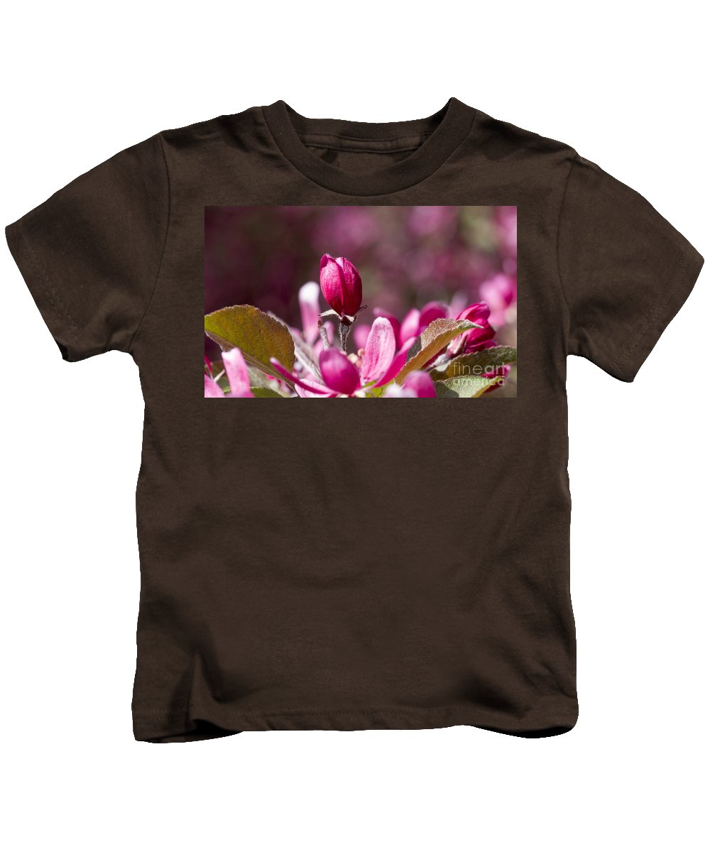 Arboretum Kids T-Shirt featuring the photograph Crabapple Bud by Steven Ralser