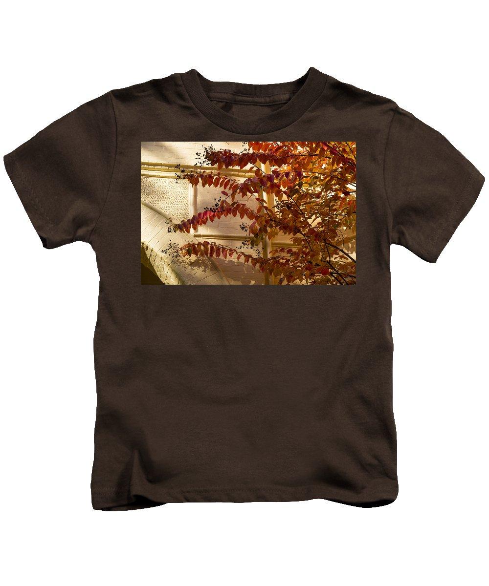 Dainty Branches Kids T-Shirt featuring the photograph Dainty Branches - Warm Autumn Colors - Washington D C Facades by Georgia Mizuleva