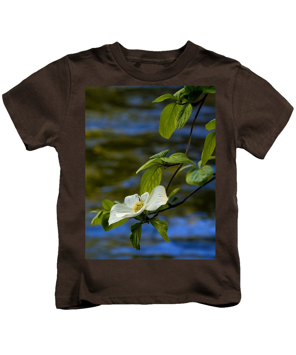 Yosemite Kids T-Shirt featuring the photograph Dogwood On The Merced by Bill Gallagher