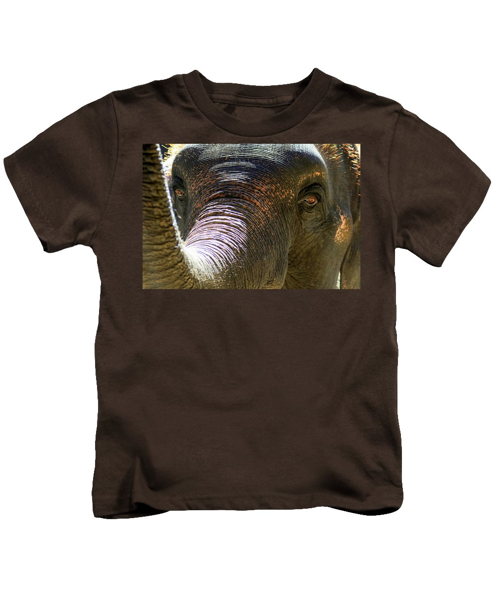 Thailand Kids T-Shirt featuring the photograph Elephant by A Rey