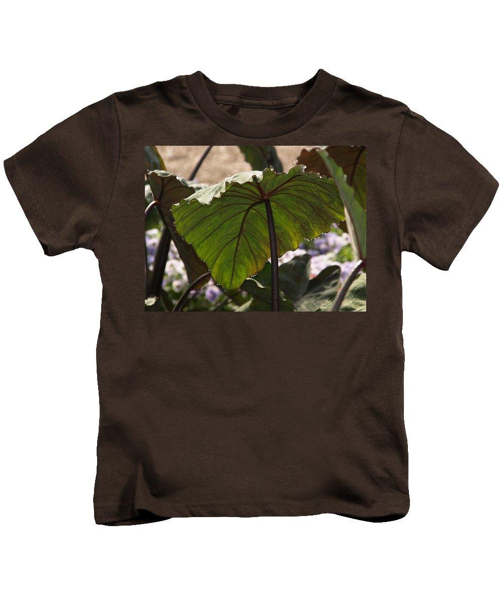 Jim James Kids T-Shirt featuring the photograph Elephant Ear by James Peterson
