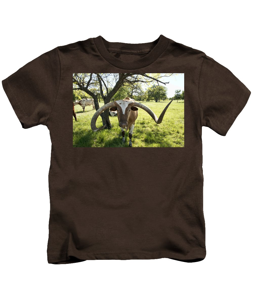 Longhorn Kids T-Shirt featuring the photograph Fabulous Texas Longhorn by Kathy Clark