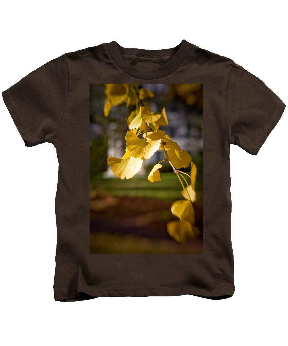 Color Kids T-Shirt featuring the photograph Fall Colors 6737 by Timothy Bischoff