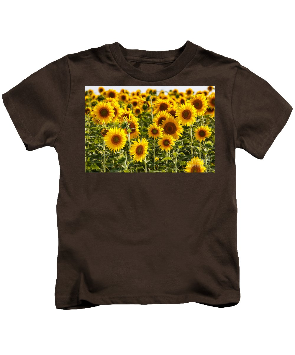 Sunflowers Kids T-Shirt featuring the photograph Field Of Happiness by Terri Morris