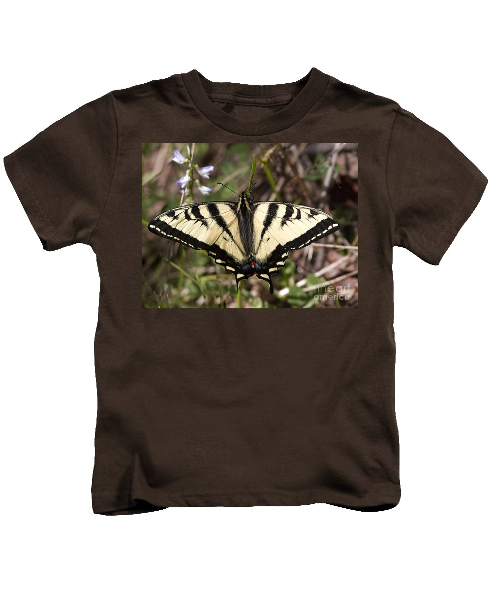 Blue Kids T-Shirt featuring the photograph Flower And Butterfly by Russell Smith