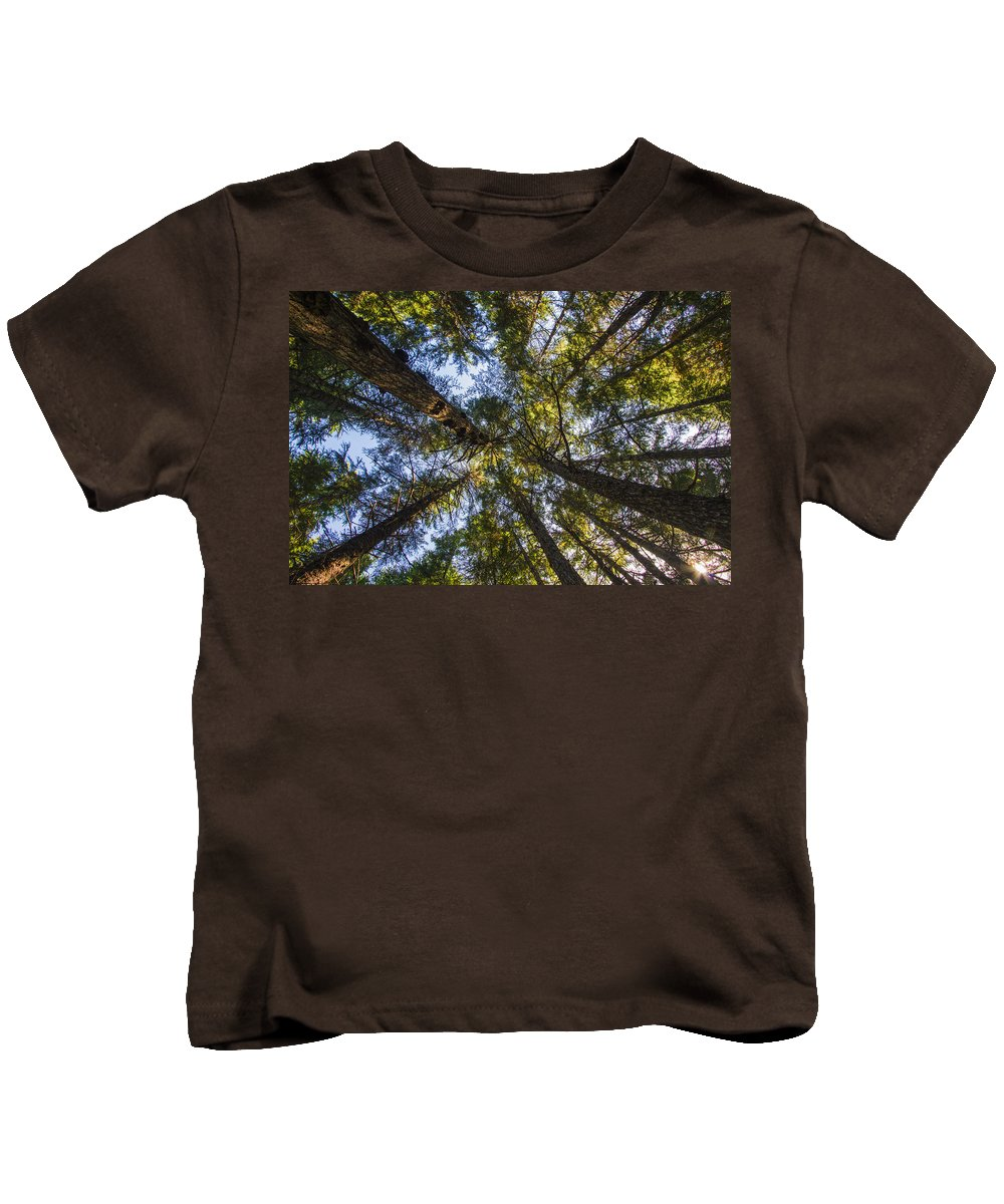Alaska Kids T-Shirt featuring the photograph Forest Canopy by Kyle Lavey