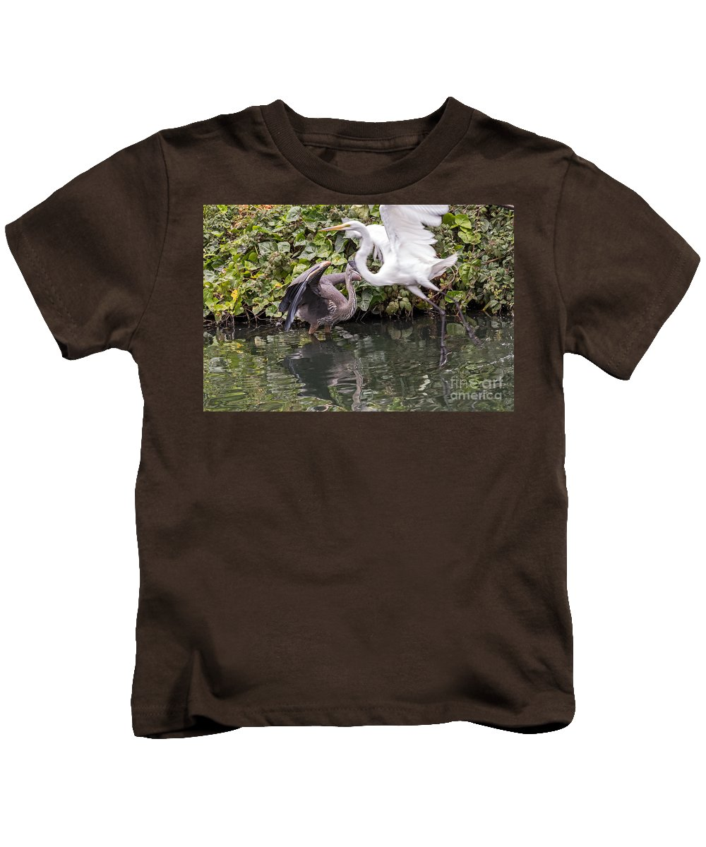 Ardea Alba Kids T-Shirt featuring the photograph Greats Collide by Kate Brown