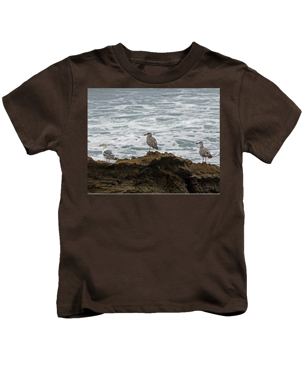Sea Gulls Kids T-Shirt featuring the photograph Gulls Podium by Shoal Hollingsworth