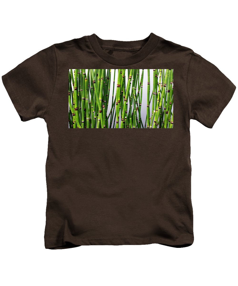 Horsetail Plant Kids T-Shirt featuring the photograph Horsetail by Guillermo Rodriguez