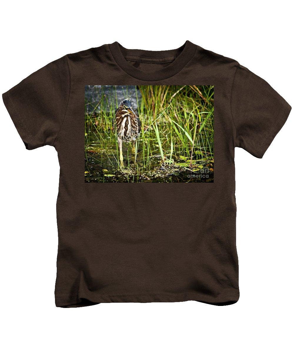 Green Heron Kids T-Shirt featuring the photograph Hunting Heron by Cheryl Baxter