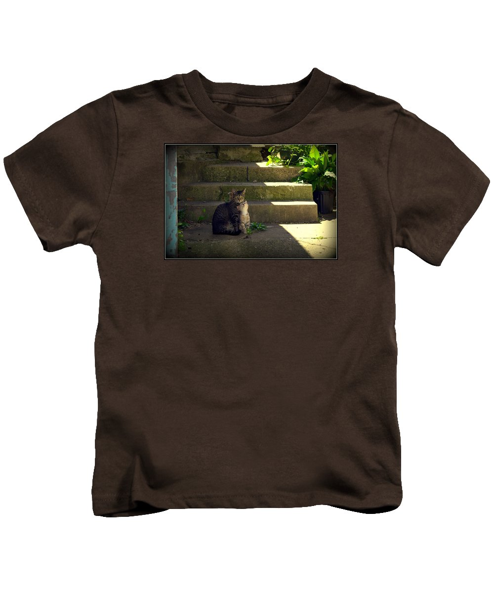 Cat Kids T-Shirt featuring the photograph I Love You by Kathy Barney