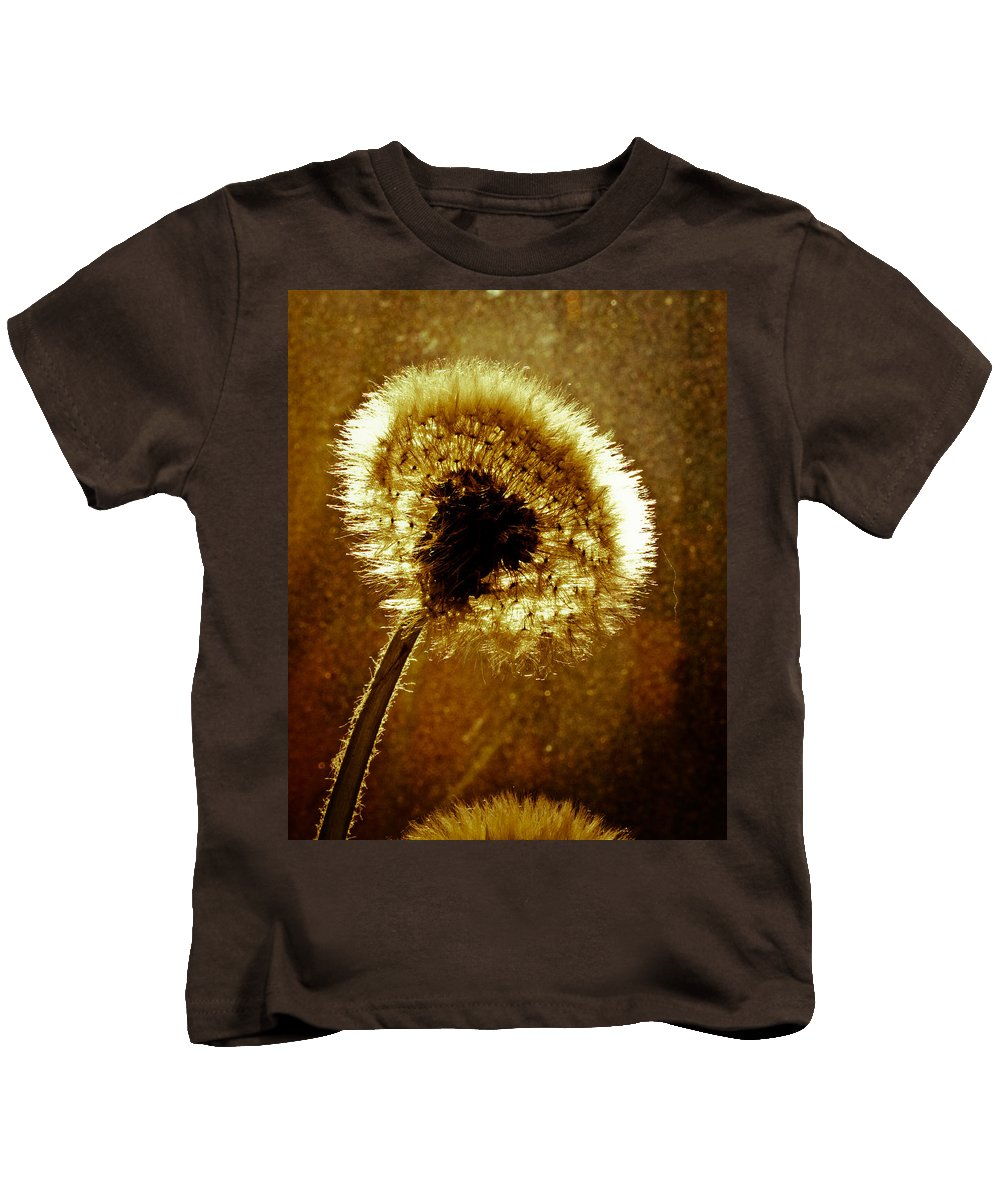 Flowers Kids T-Shirt featuring the photograph Last Light Of Day by Bob Orsillo