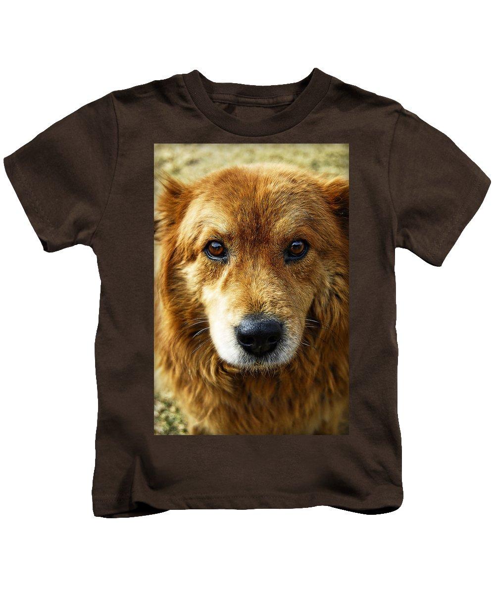 Dog Kids T-Shirt featuring the photograph Little Lady by Saija Lehtonen