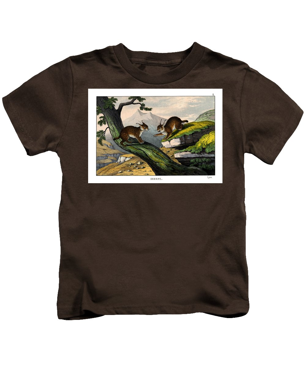 Wild Animals Kids T-Shirt featuring the drawing Lynx by Splendid Art Prints