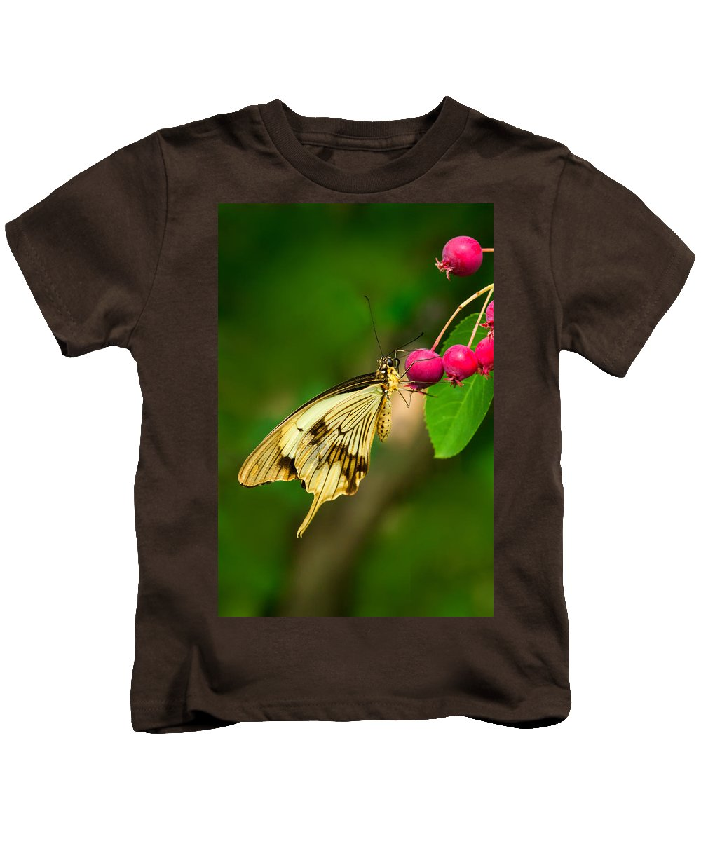 Butterfly Kids T-Shirt featuring the photograph Mocker Swallowtail Butterfly And Berries by Lindley Johnson