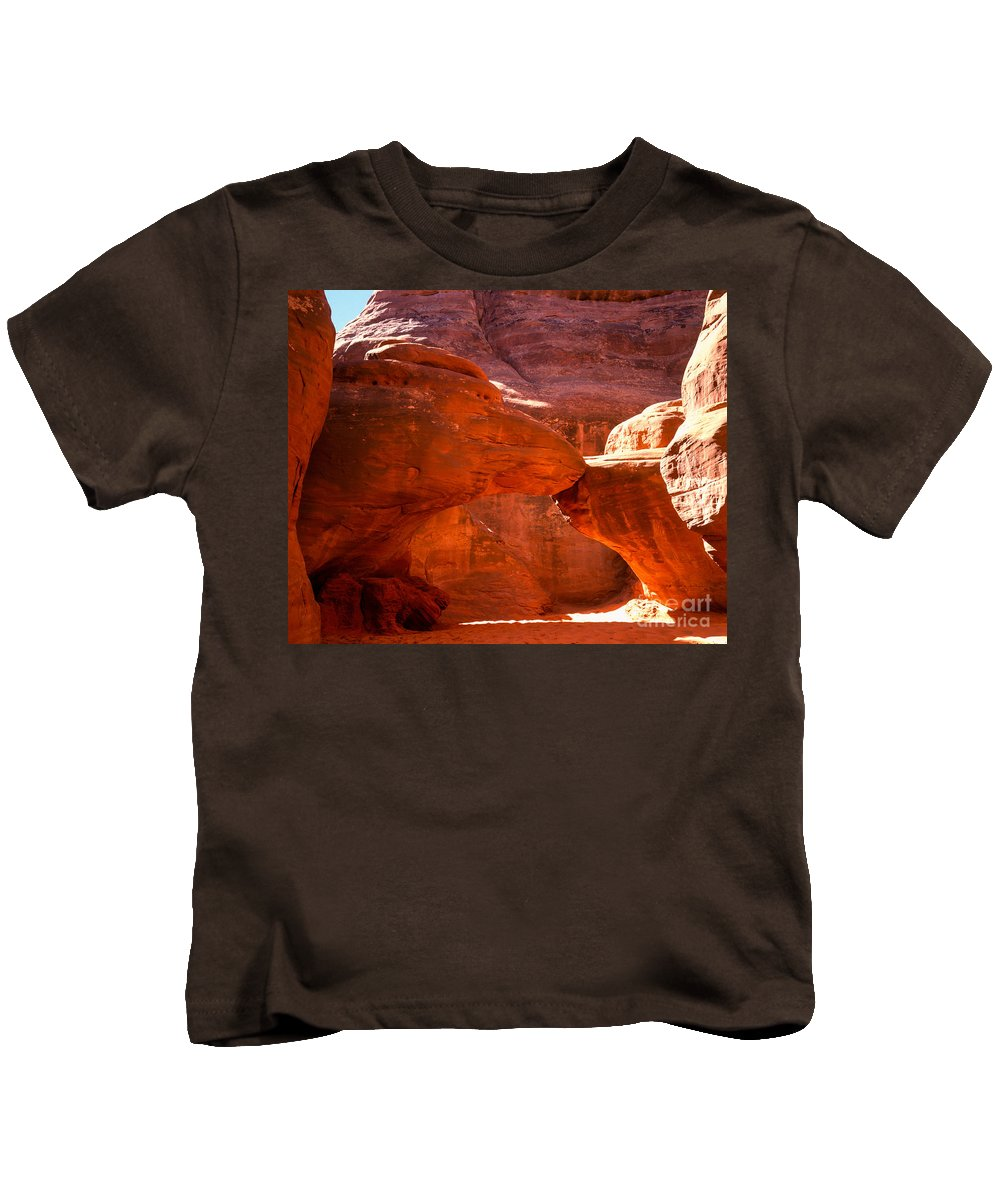 Arch Kids T-Shirt featuring the photograph Mother And Child Turtles by Tracy Knauer
