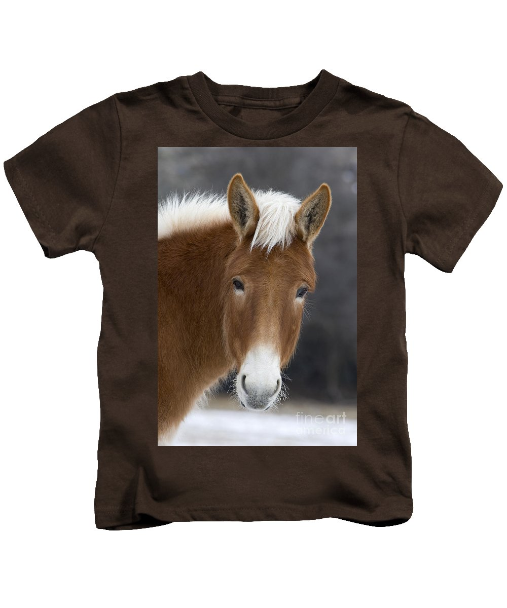 Mule Kids T-Shirt featuring the photograph Mule by Jean-Louis Klein and Marie-Luce Hubert