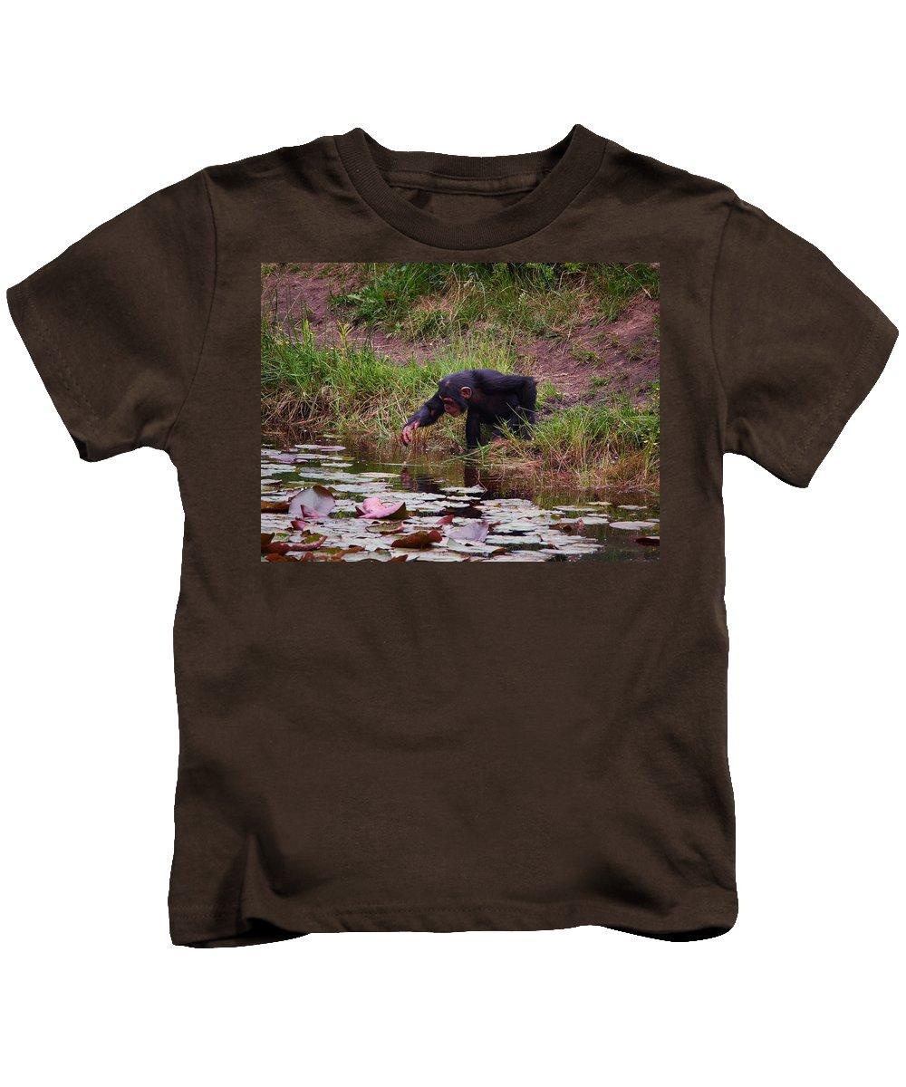 Alankomaat Kids T-Shirt featuring the photograph Narcissos by Jouko Lehto