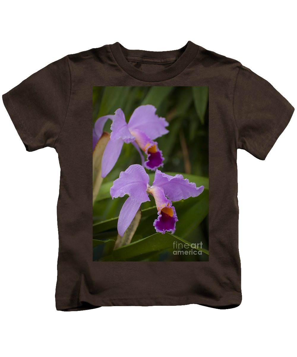Orchids Kids T-Shirt featuring the photograph Orchids Pictures 1 by World Wildlife Photography