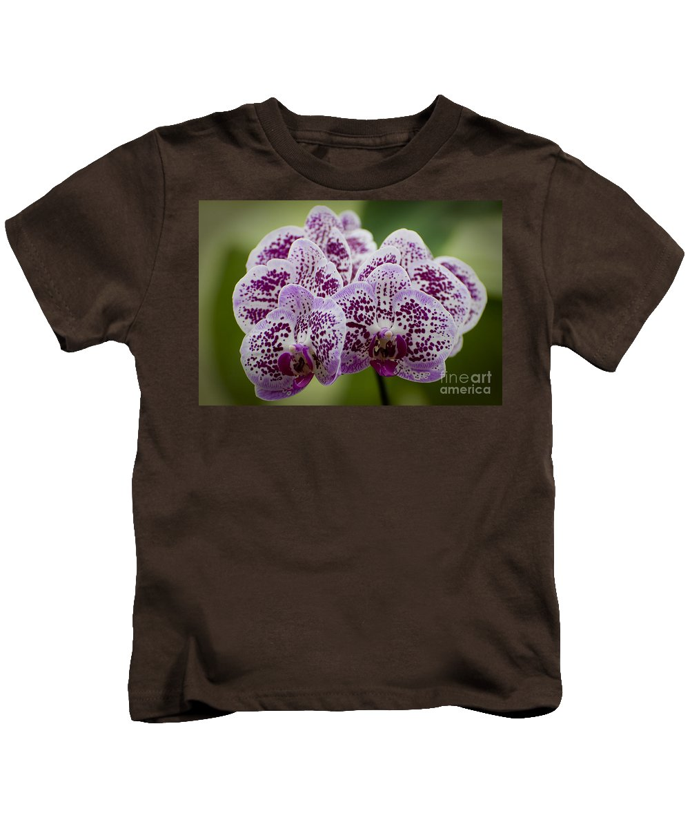 Orchids Kids T-Shirt featuring the photograph Orchids Pictures 11 by World Wildlife Photography