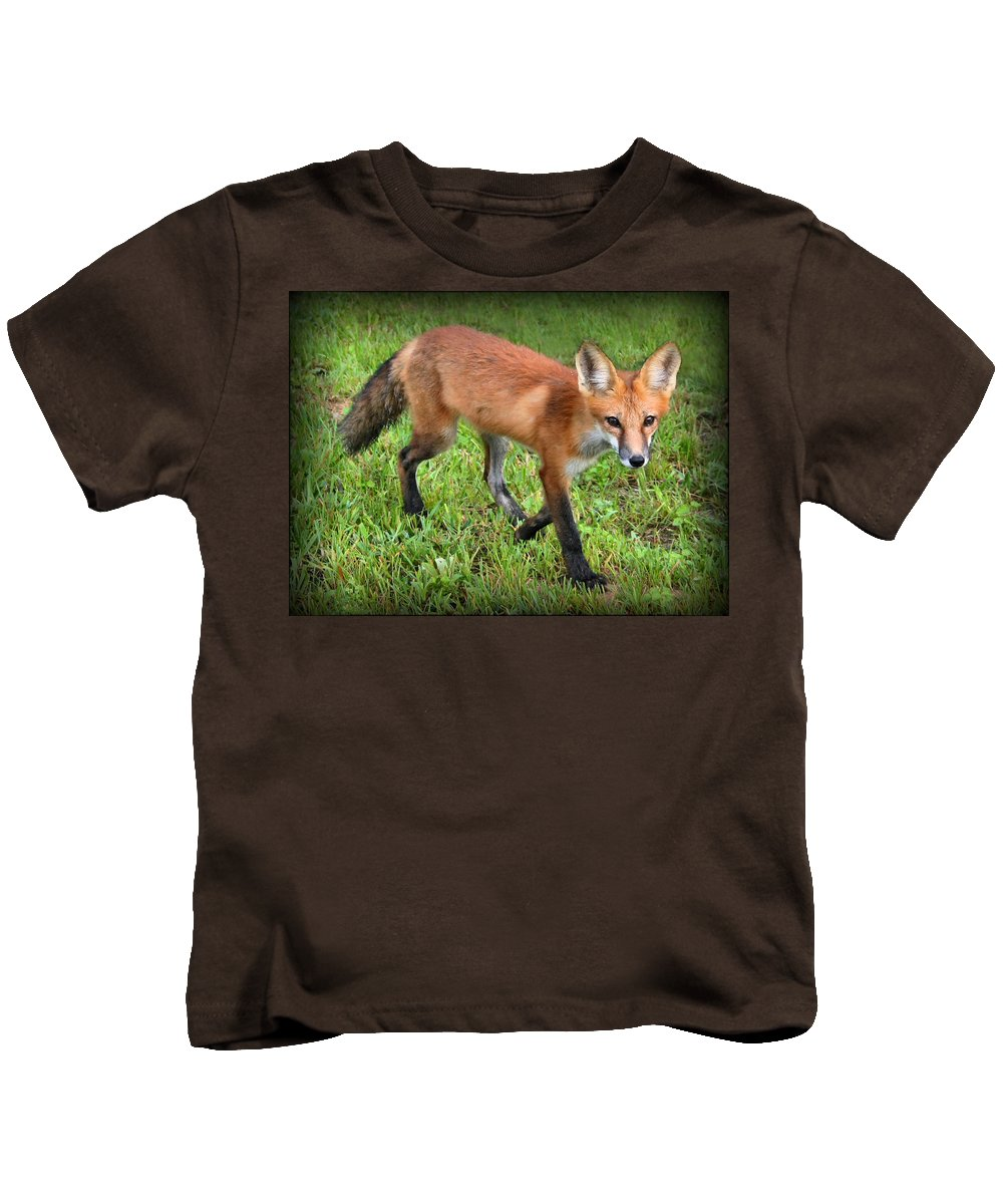 Fox Kids T-Shirt featuring the photograph Out For A Walk by Kristin Elmquist